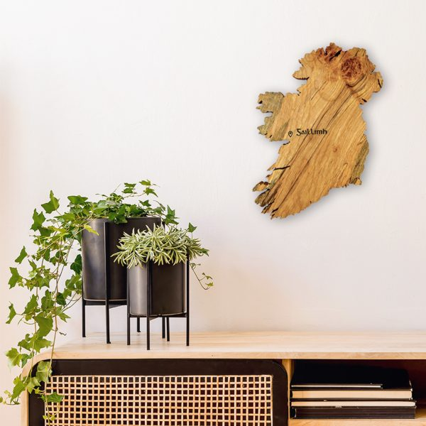 Personalised wooden map of Ireland wall art on interior wall beside 2 black plant pots that sit on a wooden desk.